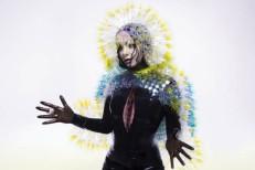 Following Leak, Björk&#8217;s <em>Vulnicura</em> Is On iTunes Now