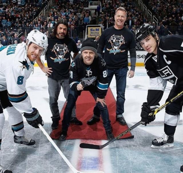 Metallica Sharks