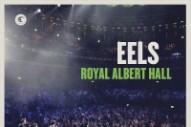 Watch Eels Play &#8220;A Daisy Through Concrete&#8221; From Their <em>Royal Albert Hall</em> Concert Film (Stereogum Premiere)