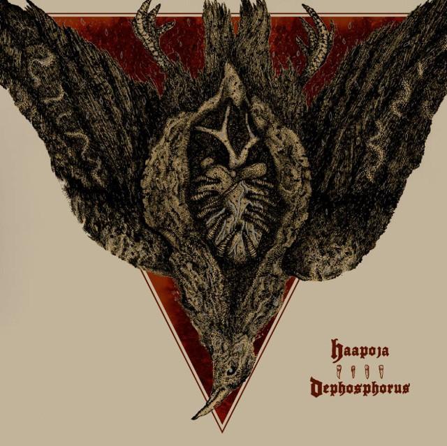 Dephosphorus/Haapoja - Collaboration