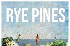 "Rye Pines - ""Atlantic Ascent"" (Stereogum Premiere)"