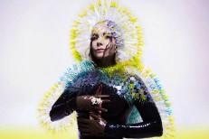 Björk Weighs In On Spotify Debate