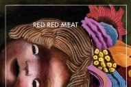 "Red Red Meat – ""Idiot Son (Cleversley Version)"" (Stereogum Premiere)"