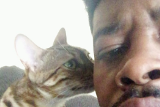 Danny Brown Cat Bros