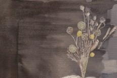 Steve Gunn & The Black Twig Pickers -