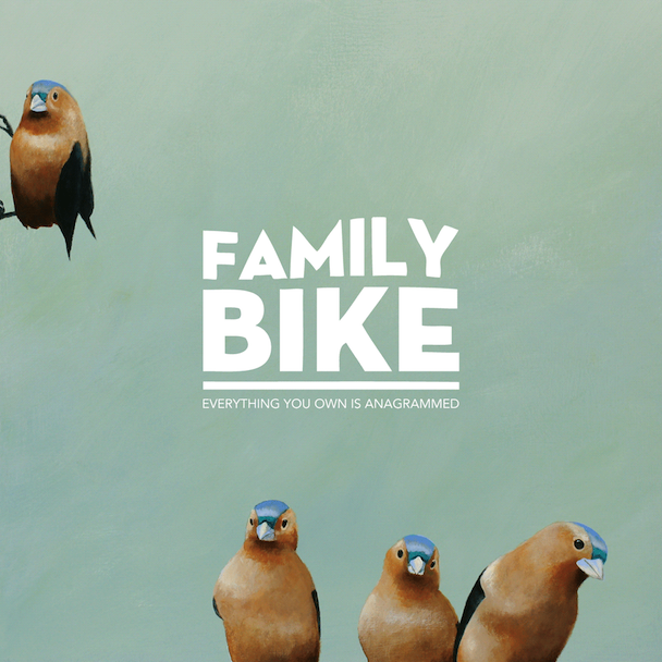 "Family Bike - ""Idiot Boy"" (Stereogum Premiere)"