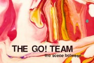 "The Go! Team – ""What D'You Say?"""