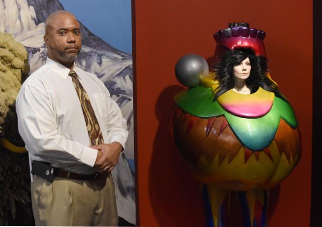 Bjork MoMA Retrospective