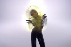 Bjork - Lionsong video