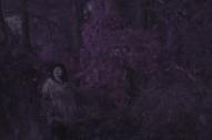 "Courtship Ritual – ""Ancient Drip"" Video"