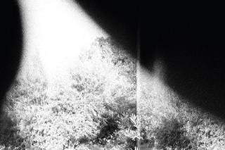 Album Of The Week: Godspeed You! Black Emperor <em>Asunder, Sweet And Other Distress</em>