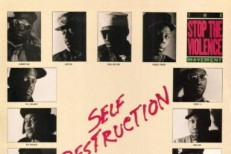 Self Destruction single