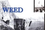 Stream Weed <em>Running Back</em> (Stereogum Premiere)