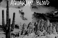 "Aquarian Blood – ""Savage Mind"" (Stereogum Premiere)"