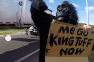 "King Tuff – ""Madness"" Video"