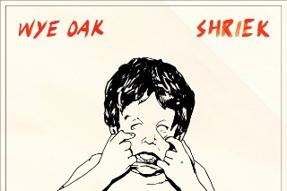 "Wye Oak – ""Despicable Animal (Moss Of Aura + Future Islands Remix)"" (Stereogum Premiere)"