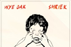 "Wye Oak - ""Despicable Animal (Moss of Aura + Future Islands Remix)"" (Stereogum Premiere)"