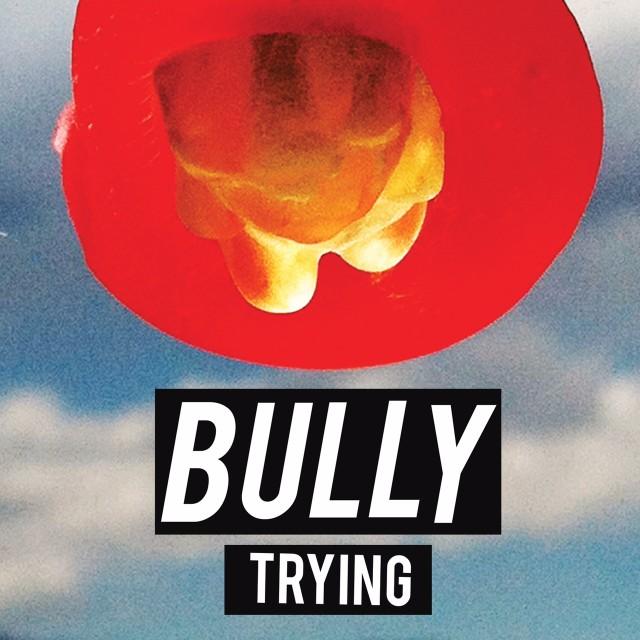 Bully -