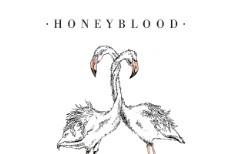 Honeyblood The Black Cloud