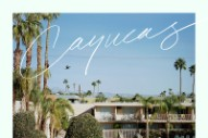 "Cayucas – ""Moony Eyed Walrus"" (Stereogum Premiere)"