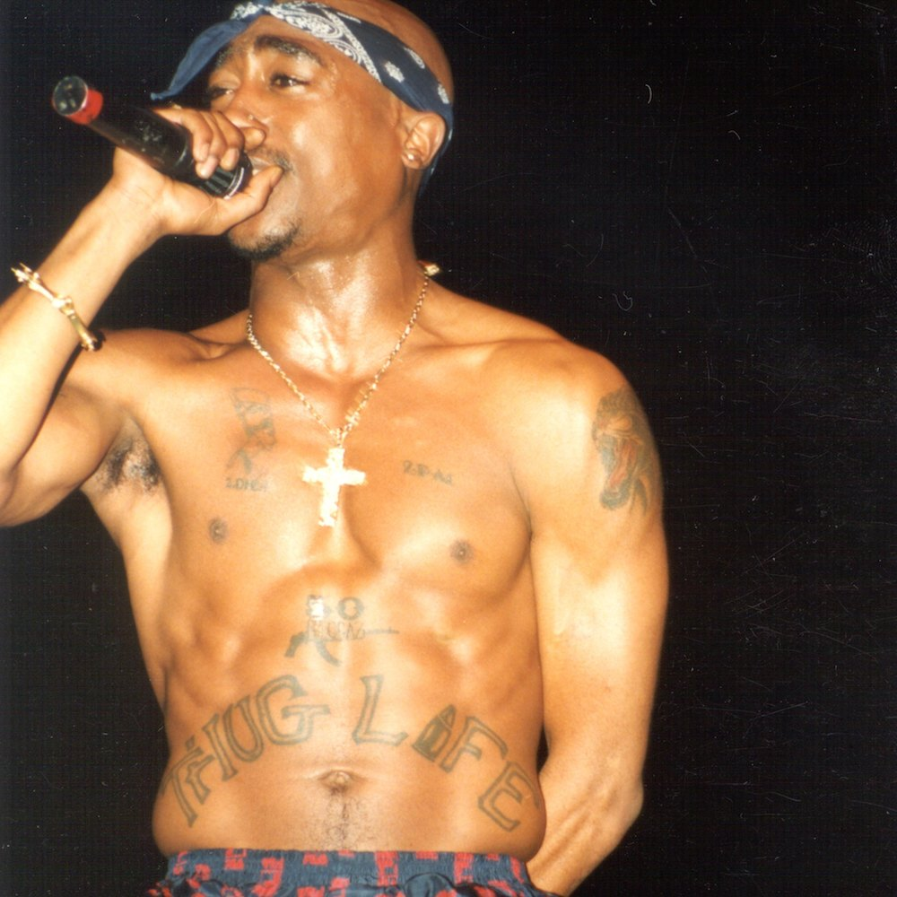the life of 2pac shakur essay Below is an essay on  (tupac shakur) c thesis statement 2pac's passion in his  by understanding tupac's life and the dedication and.