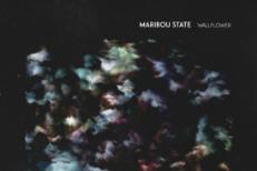 Maribou State Wallflower