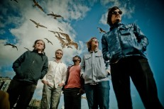 """Young Buffalo - """"Hang On To Your Ego"""" (Beach Boys Cover) (Stereogum Premiere)"""