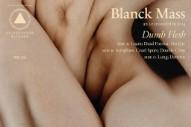 Stream Blanck Mass <em>Dumb Flesh</em>