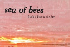 """Sea Of Bees - """"Test Yourself"""" (Stereogum Premiere)"""