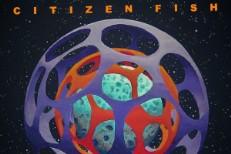 Citizen Fish - Manmade