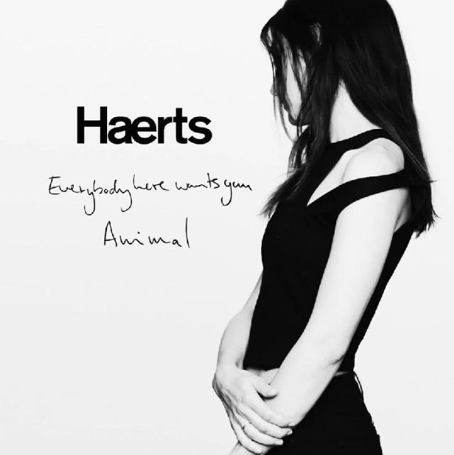 Haerts - Everybody Here Wants You