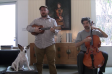 Watch Magnetic Fields' Stephin Merritt Sing New Songs For Lola The Dog