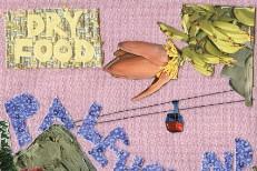 """Palehound - """"Molly"""" (Stereogum Premiere)"""