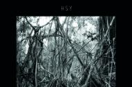 "HSY – ""Scratch"" (Stereogum Premiere)"