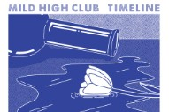 "Mild High Club – ""Undeniable"" (Stereogum Premiere)"