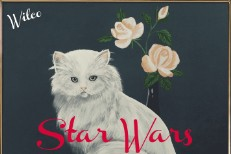 Download Wilco's Surprise New Album Star Wars