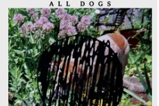 """All Dogs - """"That Kind Of Girl"""""""