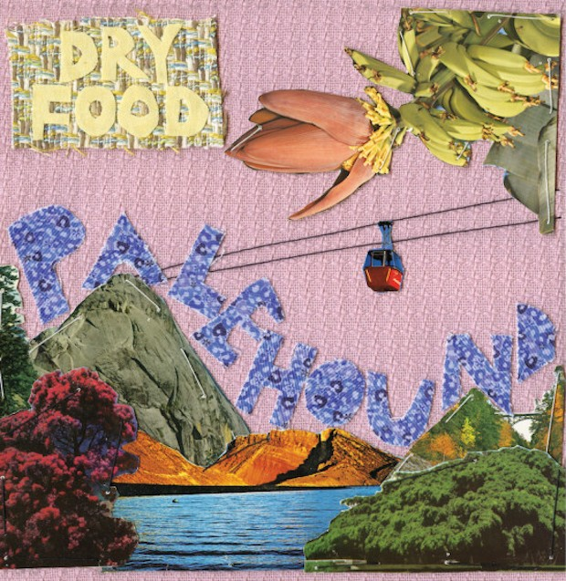 "Palehound - ""Cushioned Changing"""