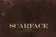 Scarface - Steer