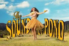 The Sound Of Pono
