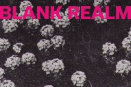 """Blank Realm – """"Palace Of Love"""" (Stereogum Premiere)"""