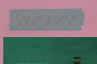 "Field Trip – ""Never"" (Stereogum Premiere)"