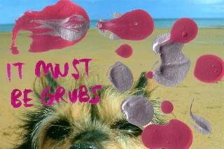 """Grubs – """"Nuffin"""" (Stereogum Premiere)"""