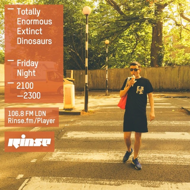 Hear Totally Enormous Extinct Dinosaurs Debut A New Song On Rinse FM