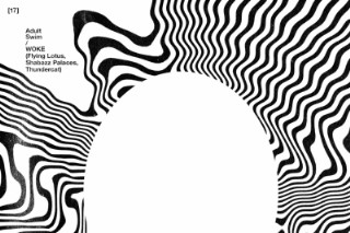 "WOKE (Flying Lotus, Shabazz Palaces & Thundercat) – ""The Lavishments Of Light Looking"" (Feat. George Clinton)"