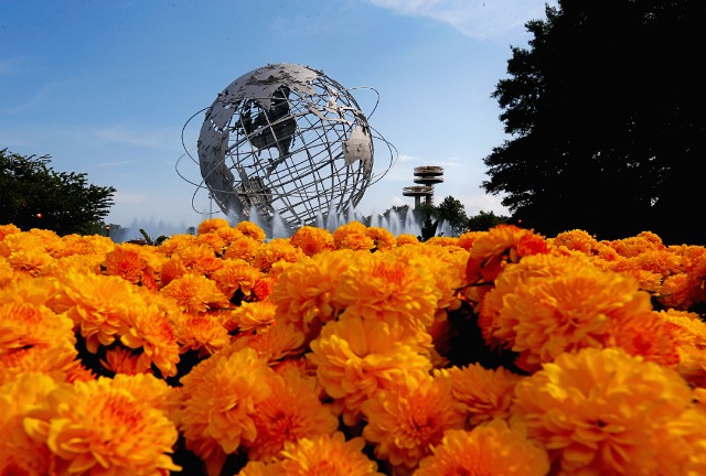 Coachella Producers Reportedly Planning Festival In Queens