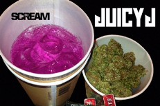 Juicy J 100% Juice