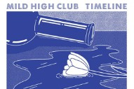 "Mild High Club – ""The Chat"" (Feat. Ariel Pink & Weyes Blood) Video"
