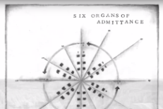 Six Organs of Admittance -