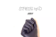"""Never Young – """"Stress Hed"""""""